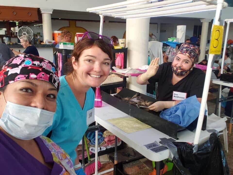 Maybeck Animal Hospital Animal Rescue Abroad